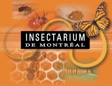 Montréal Insectarium /Insectarium de Montréal