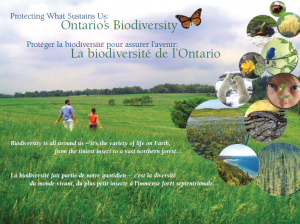 "Ontario Biodiversity Council and the Ontario Ministry of Natural Resources: ""Protecting What Sustains Us - Ontario's Biodiversity - Biodiversity is all around us; it's the variety of life on Earth, from tiniest insects to vast northern forests."""